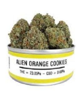 buy Alien Orange Cookie strain onlines