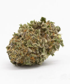 buy Blueberry strain online