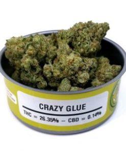 buy Crazy Glue online
