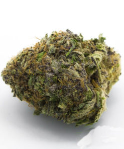 buy Grape Cookies strain online