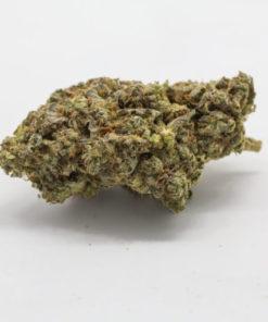 buy Medibud strain online