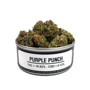 buy Purple Punch strain online
