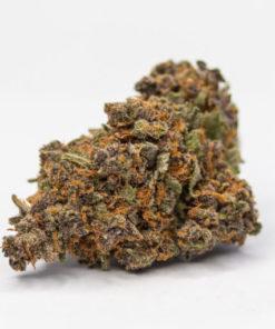 buy weed online, buy purple urkle strain onlinw