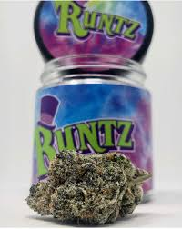 buy Gruntz Runtz