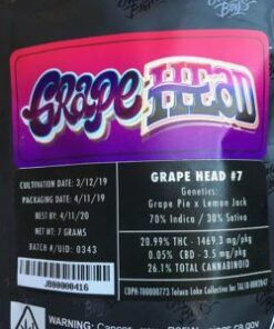 buy Jungle Boys Grape Head online