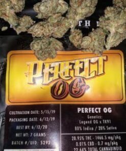Buy Jungle Boys Perfect OG online