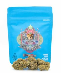 buy cheetah piss cookies strain online